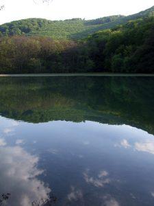 halas tó